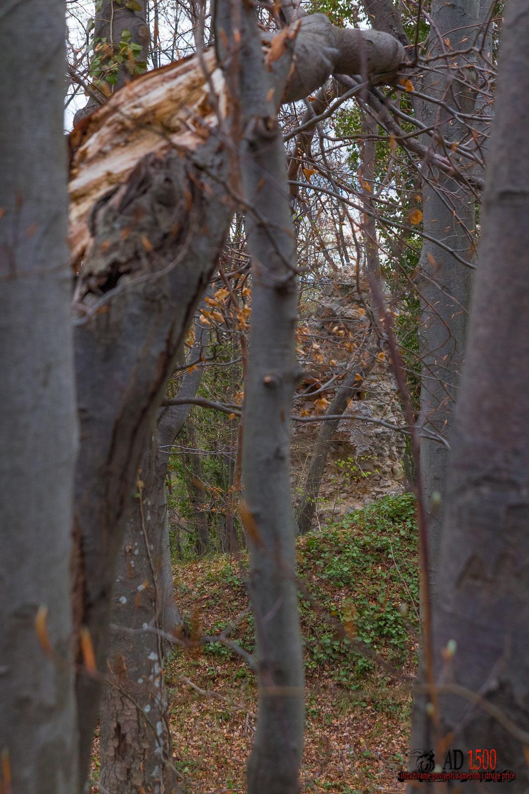 Sjeverni zid sniman s juga
